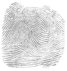 Composites (= 'double loop' fingerprints) Double_loop
