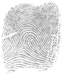 left loop image